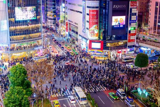 Tokyo, Japan - December 23, 2012: Traffic stops for pedestrians crossing at Shibuya Crossing. It is one of the world's most famous scramble crosswalks.
